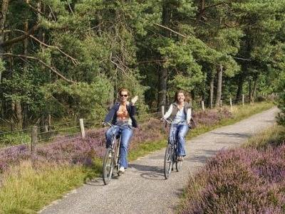 peaceful-drenthe-cycling iconh