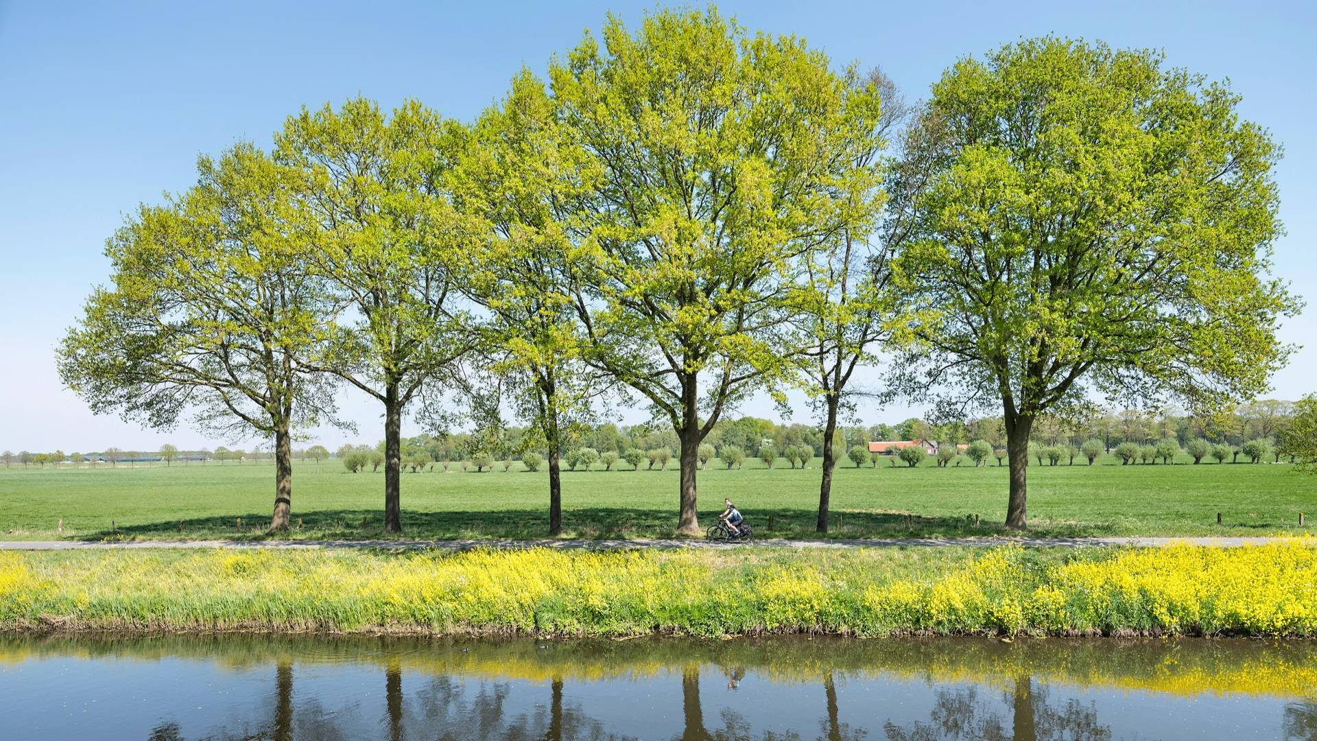 Couple cycling along water green trees_H